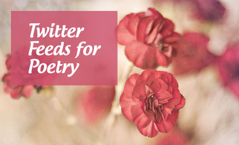 Twitter Feeds for Poetry Buffs