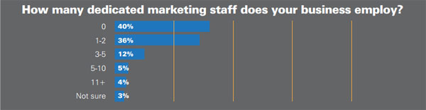 How many dedicated marketing staff does your business employ?